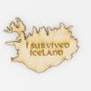 Viðarsegull – I survived Iceland